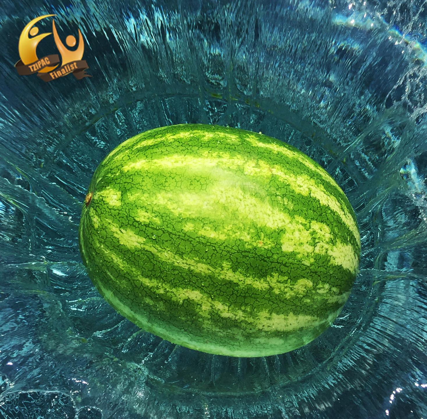 Melon (TZIPAC Award Winner)