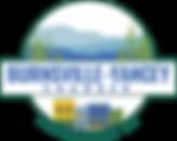 Burnsville-YanceyChamber-logo.webp