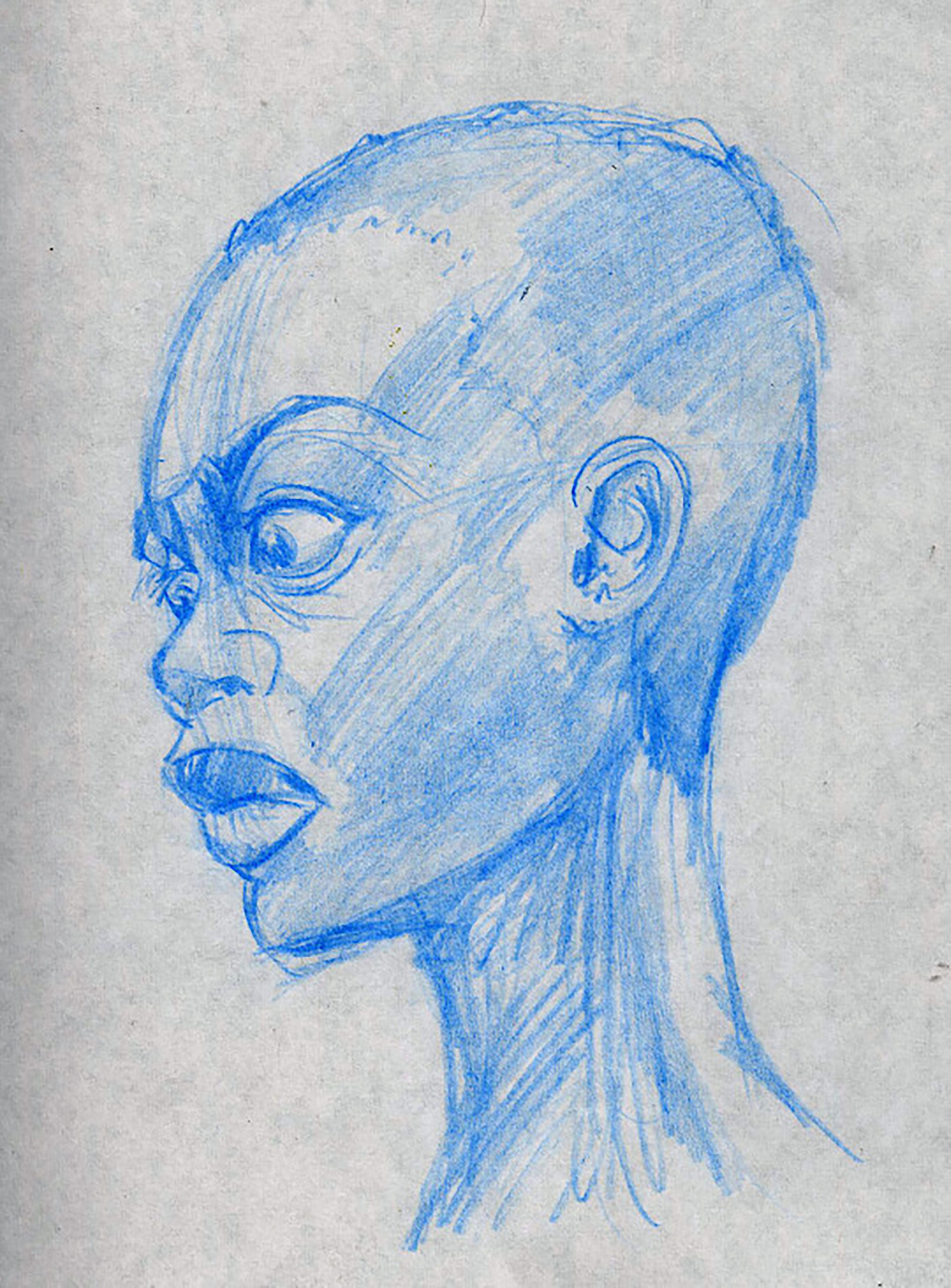 Female Face Study