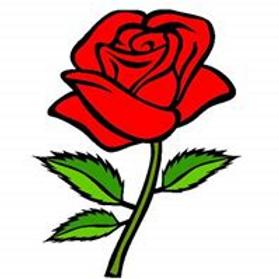 I Am a Rose