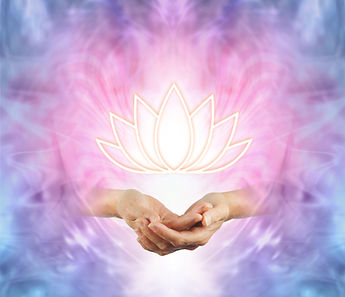The Sacred Lotus - female cupped hands