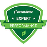 Expert-Performance-Badge.png