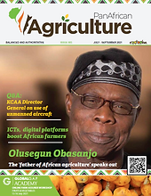 PAA cover image.png