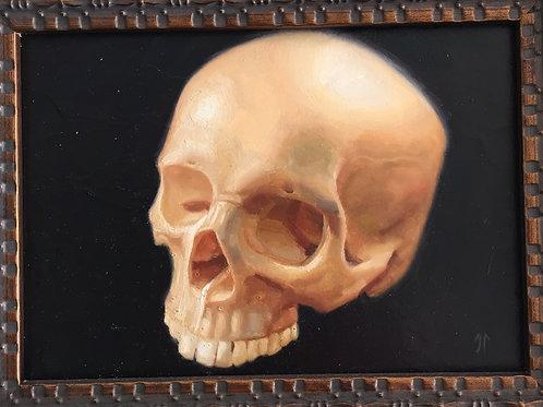 Skull #5
