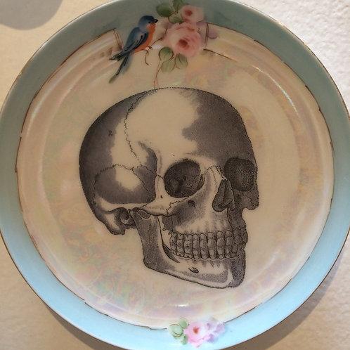 """""""Victorian Medical Illustration - Skull"""" - SOLD"""