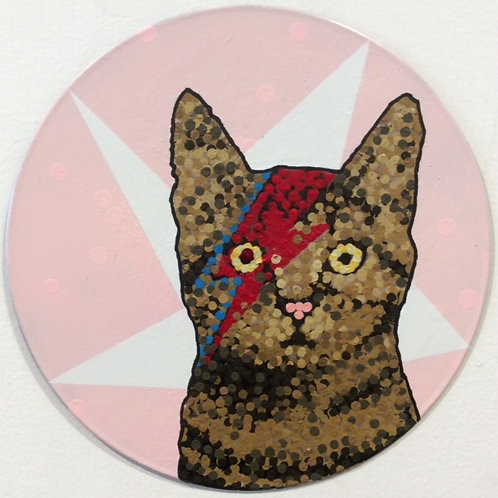 Bowie Kitty