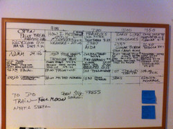 Documentary scenes on a board