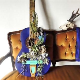 Guitare-Nymphea-Botanique-1.jpg