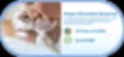 transparent-atopicderm-webbutton-01.png