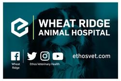 Ethos Hospital Signage