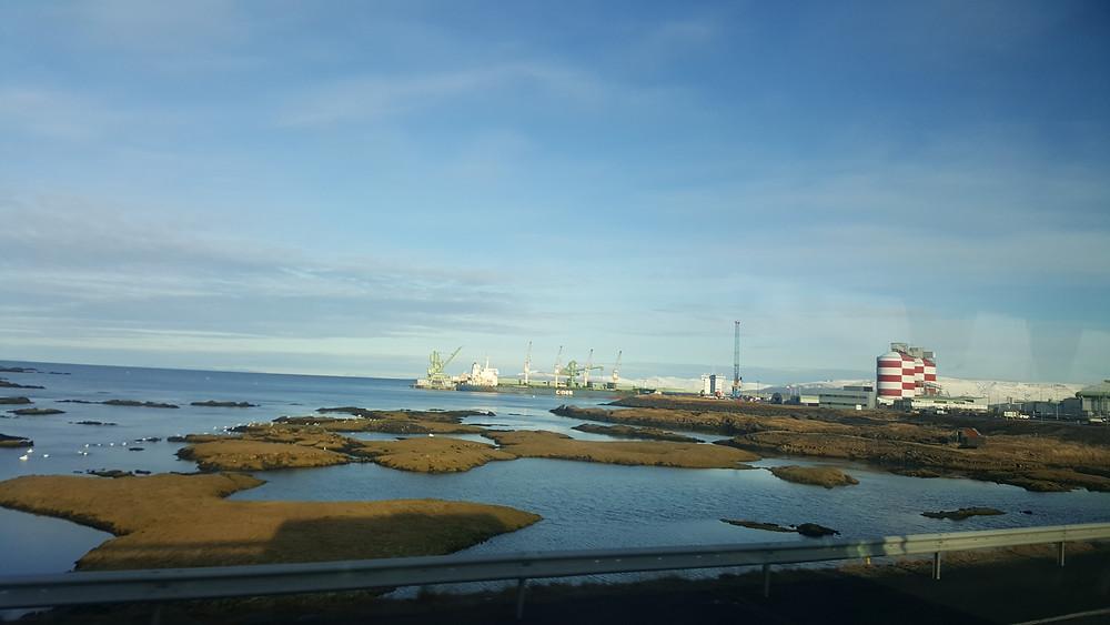 musgos de Reykjavik, Islândia