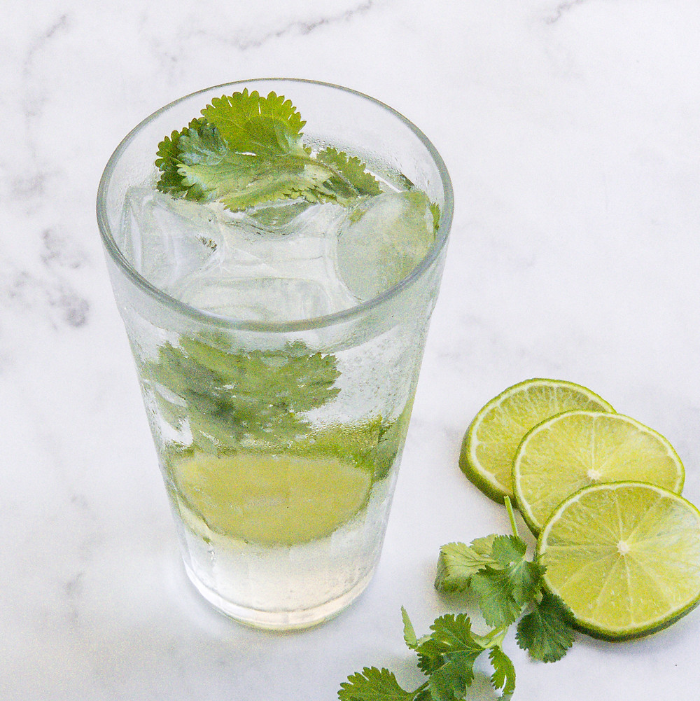 botânicos do gin