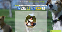 North Fork School for Dogs