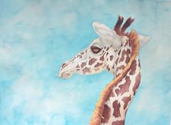 Giraffe_watercolor_sized_edited_edited