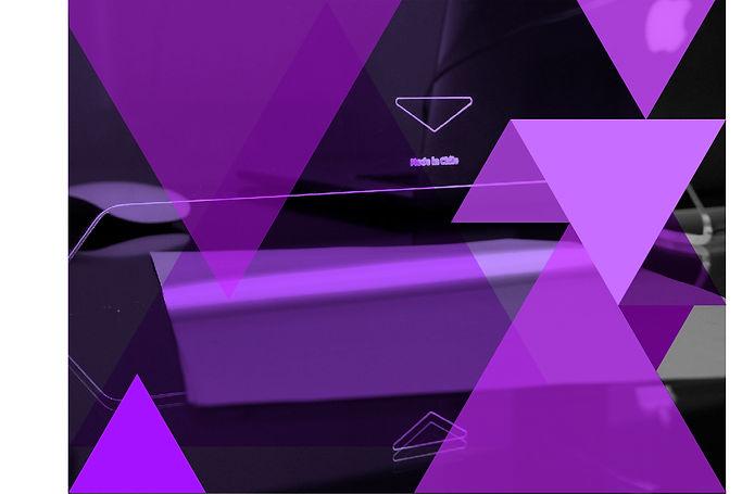 sincovid presentacion2.jpg