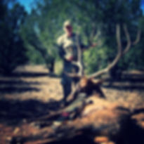 ARIZONA GUIDED ELK HUNTING