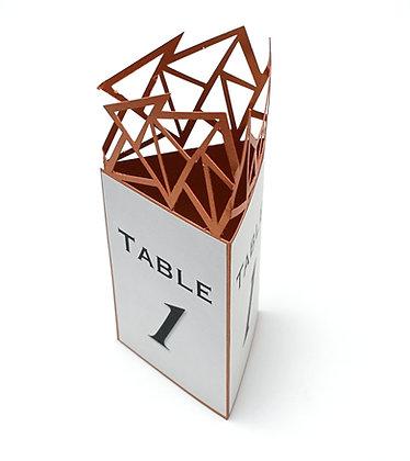 Skylar - wedding menu/ table number