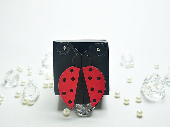 Ladybird / Ladybug themed cake box