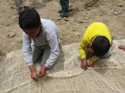 Kids helping, Erosion Control
