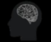 brain (3).png