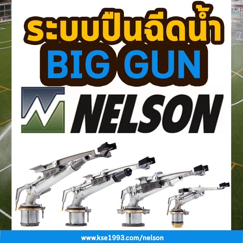 nelson biggun ปืนบิ๊กกัน
