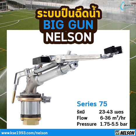 Nelson SR75.jpg