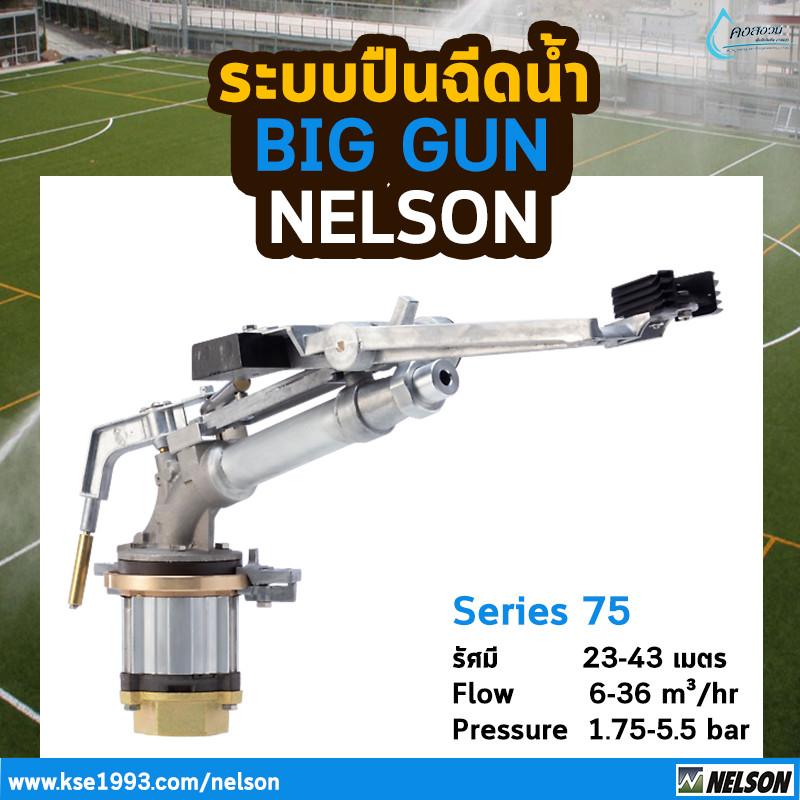 nelson biggun2 ปืนบิ๊กกัน