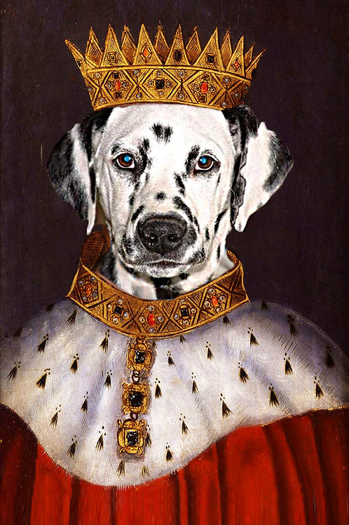 Dalmatian edited as King Henry of England.