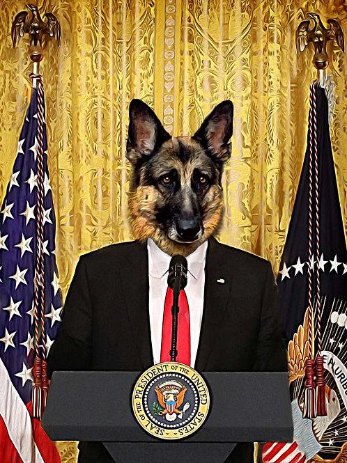 In-Dog-uration - President Dog