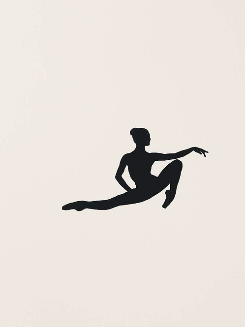 "(#33) ""dance is the hidden language of the soul.""-Martha Graham {#7}"