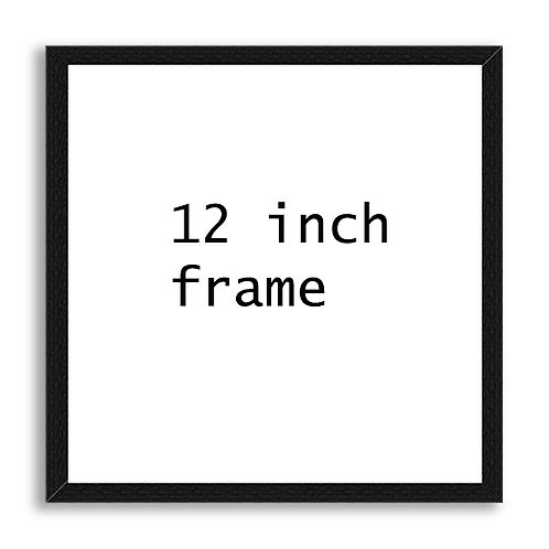 12 x 12 inch black wood frame with acrylic