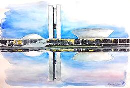 Brazillian Congress Building