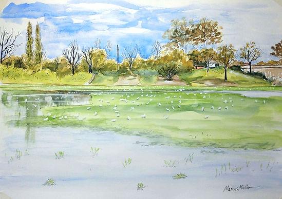 Old Deer Park, watercolour & ink painting