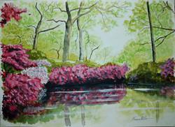 Isabela Plantation - Richmond Park