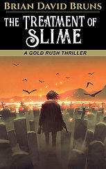 The Treatment of Slime Bruns book cover