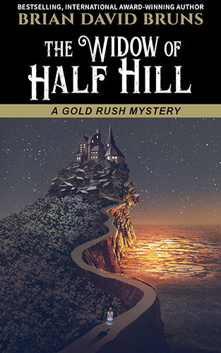 The Widow of Half Hill book cover Bruns