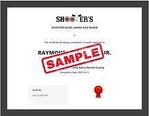 final certificate sample.jpg