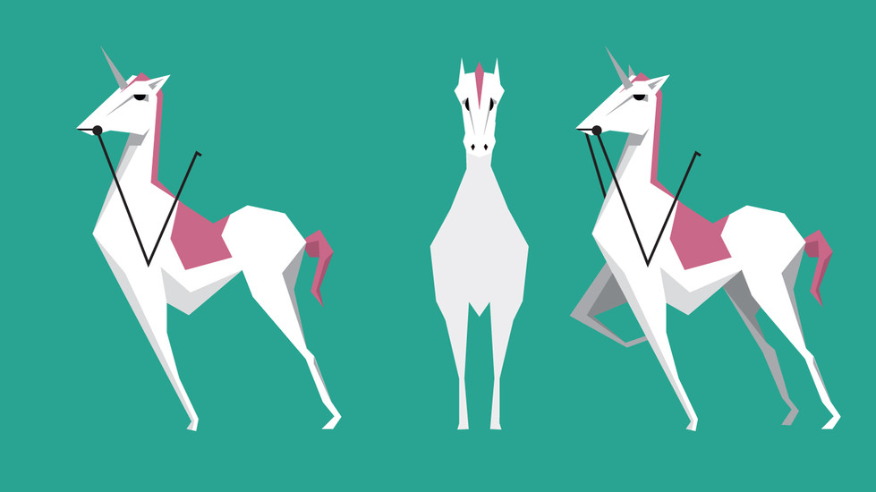 131217a_S00-00_Animals_Horse.jpg