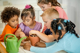 kids planting vegetables