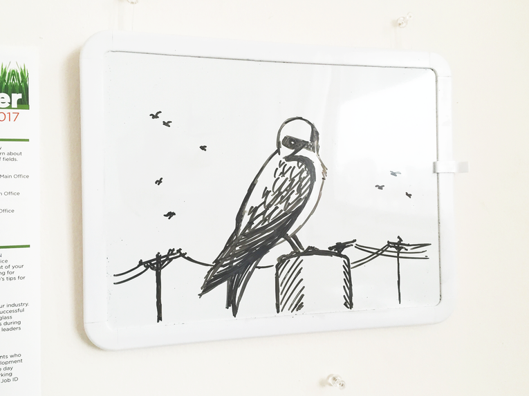 Swallow on Whiteboard.png