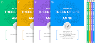 Trees of Life Catalogs for AMNH