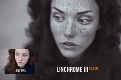 linchrome_preview_03