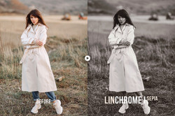 linchrome_preview_06
