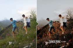tangerine_preview_06