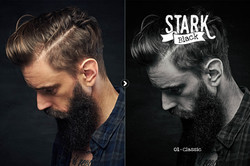 stark_preview_01