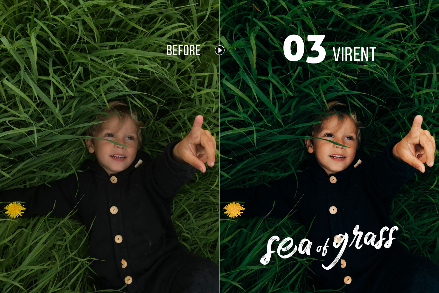 seaofgrass_preview_03