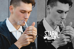 stark_preview_09
