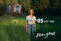 seaofgrass_preview_05