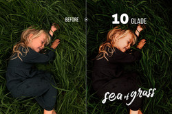 seaofgrass_preview_10