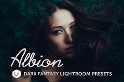 Albion Dark Fantasy LR Presets
